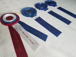 2nd set of state fair ribbons